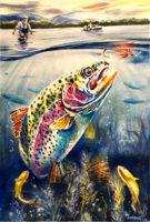 rainbow-trout-wc72.jpg