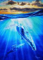 watercolor-whale72.jpg
