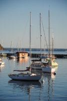 VH-sailboats72.jpg